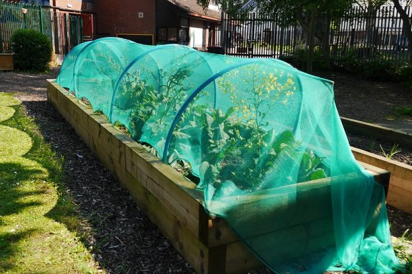 Gatis Community Centre Wolverhampton_Gardening Club 1